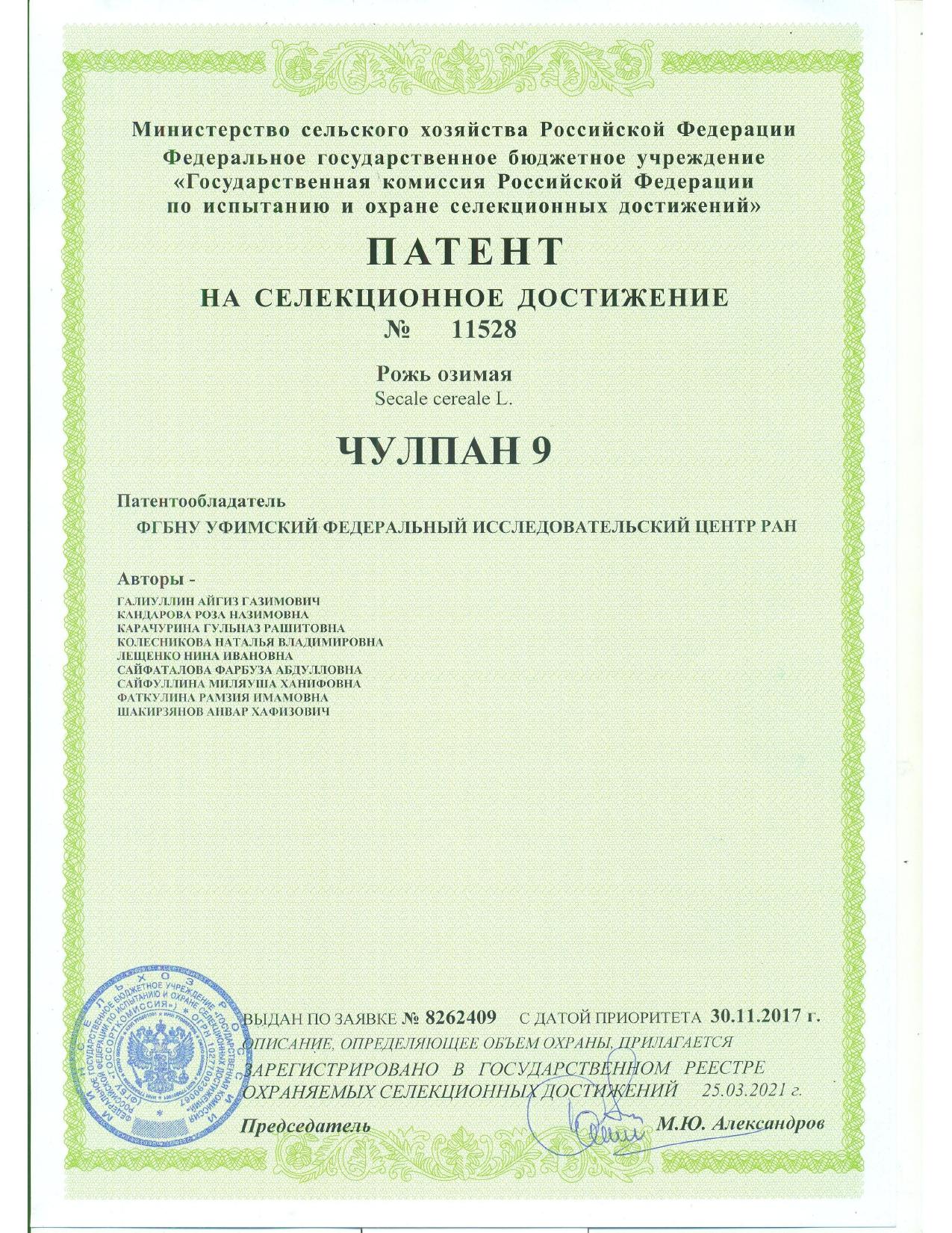 Получен патент на селекционное достижение на новый высокопродуктивный сорт озимой ржи Чулпан 9 селекции Башкирского НИИСХ УФИЦ РАН